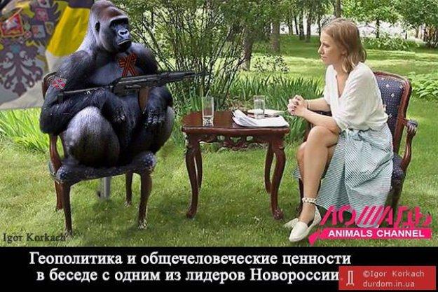 Чиновники РГА на Луганщине отмывали деньги на госзакупках - Цензор.НЕТ 3905