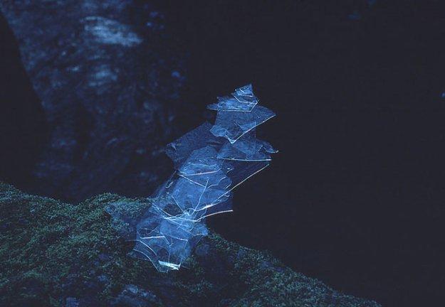 Природный художник Энди Голдсуорти
