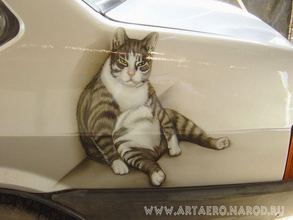 рисунки фото на машинах