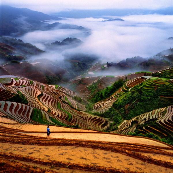 Картинки природы китая