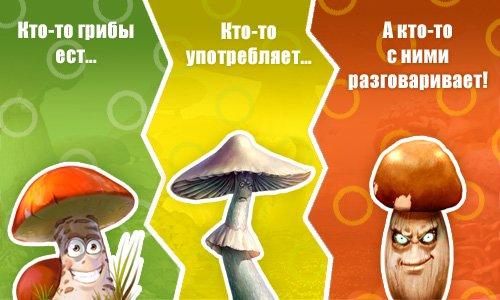 приколы картинки грибы