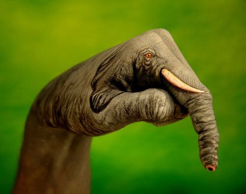 Body Art – Hand Animals