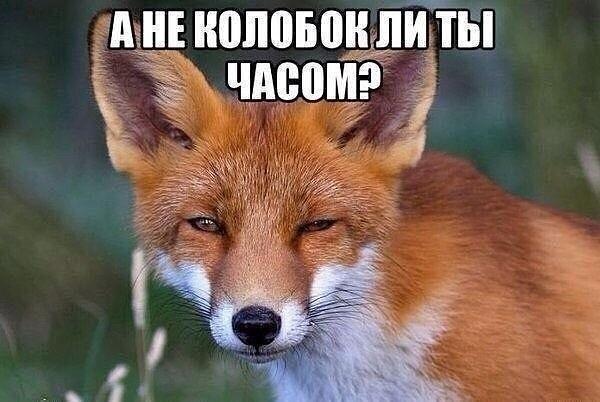"""""""Я уже не ворую вообще, давно. И никогда"""", - мэр Черноморска Хмельнюк сделал неожиданное признание - Цензор.НЕТ 1729"""