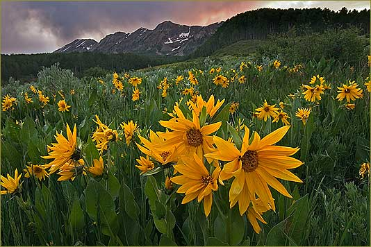 Супер картинки природа