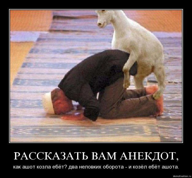 Хачи ебут русскую реальное 22 фотография