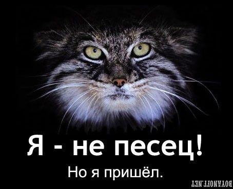 http://bm.img.com.ua/nxs/img/prikol/images/large/8/9/165098_311492.jpg