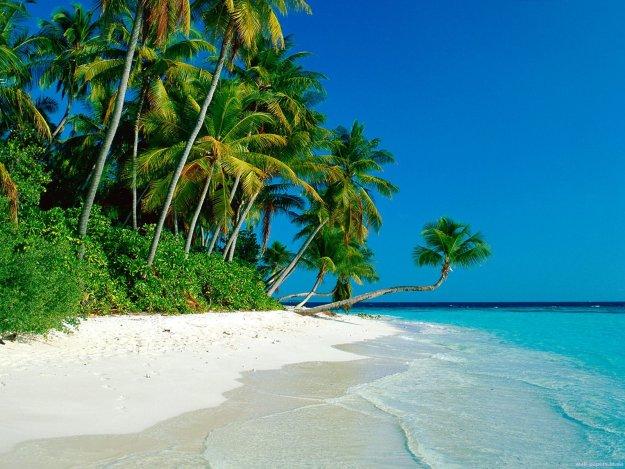 Картинки лето на море
