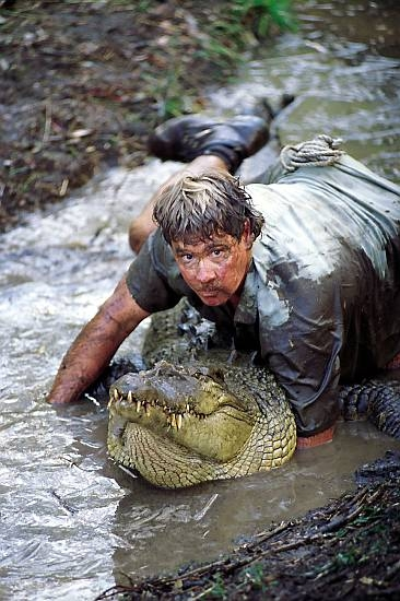 ловля крокодила передача
