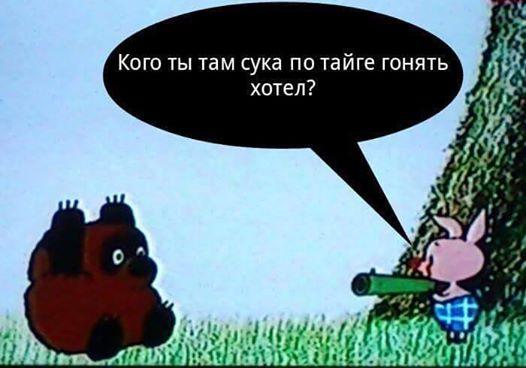 """Российские журналисты погибли от минометного огня """"своих же сепаратистов"""", - Савченко - Цензор.НЕТ 4165"""