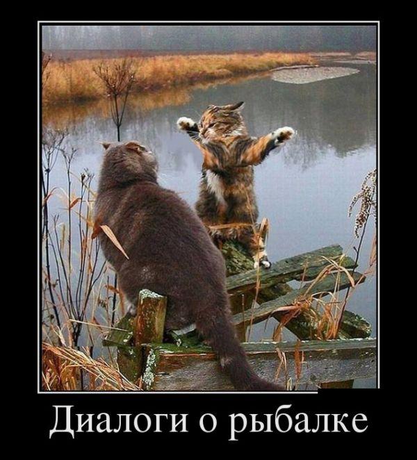 http://bm.img.com.ua/nxs/img/prikol/images/large/9/2/317229.jpg