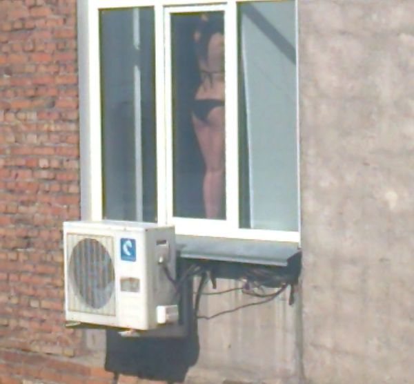v-okno-vidno-goloe-derevo