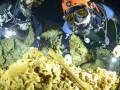 В Мексике крупнейшая подводная пещера оказалась кладбищем майя