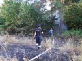 На Днепропетровщине всю ночь боролись с лесным пожаром