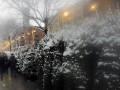 В Киеве с 15 декабря откроются елочные базары