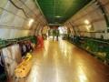 Киев поможет Казахстану создать авиационную промышленность