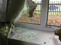 В Донецкой области бросили гранату в жилой дом, погибла женщина
