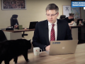 Кот прервал выступление мэра Риги в прямом эфире