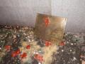 В Ростове неизвестные забросали консульство Украины кирпичами, яйцами и зеленкой