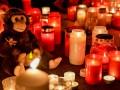 ЧП в зоопарке Германии: сгорели 30 животных