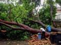 Девять человек погибли из-за оползня в Бразилии