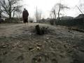 В результате обстрела Донецка погибли два человека
