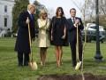 СМИ рассказали, куда исчез дуб, привезенный Макроном в подарок Трампу
