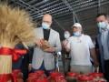Шмыгаль рассказал, за счет чего украинский агросектор станет успешным