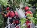 В Германии самолет с людьми застрял на дереве