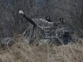 В ООС боевики обстреляли позиции ВСУ из пулеметов и гранатометов