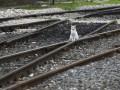 Укрзалізниця потратит больше, чем планировала на обновление парка - Ъ