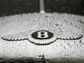 В России Bentley отказали в регистрации новых брендов