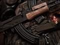 В Николаеве с полигона сбежал вооруженный солдат - СМИ