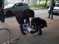 В Харькове задержали иностранца, находящегося в международном розыске