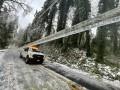 Ледяной шторм и блэк-аут: Орегон объявил чрезвычайное положение