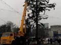 Кишиневу вернут деньги за поломанную елку из Украины