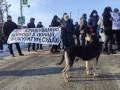 В Полтаве из-за дорогого газа перекрыли трассу Киев-Харьков
