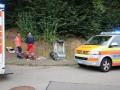 В Германии шершни напали на посетителей фестиваля