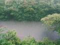 Погода в Украине на 30 апреля: Дожди