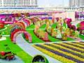 Сад Чудес: самый большой цветочный сад в мире