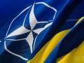 В НАТО недовольны адаптацией стандартов Альянса в Украине