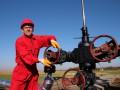 Цена на нефть падает на данных о росте запасов в США
