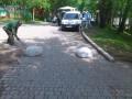 Вслед за Крещатиком полусферы установили в Голосеевском парке