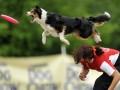 В Польше проходит чемпионат Европы по фрисби для собак