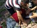 В центре Киева старая груша упала на прохожих
