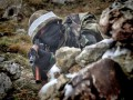 Боевики ведут огонь на мариупольском направлении - штаб АТО