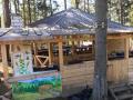 Карпатский детский лагерь нарушает запреты и работал без документов - СМИ