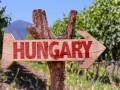 Позиция Венгрии - не повод отказаться от национальных интересов - Березовец