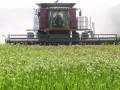 Депутаты намерены создать крупнейшего землевладельца в Украине
