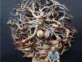 Настрогал от души: скульптор вырезал десятки животных