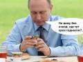 Йогурт и кадровый переворот: Пользователи сети посмеялись над активностью Путина